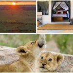 Tent and Camping Safari in Tanzania