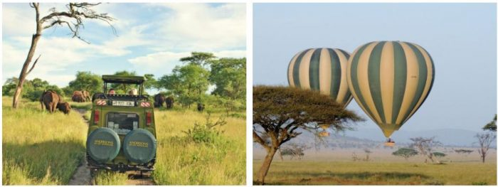 SAFARI IN TANZANIA WITH SWEDISH GUIDE 2
