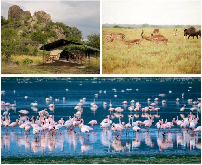 TENT SAFARI IN TANZANIA 2
