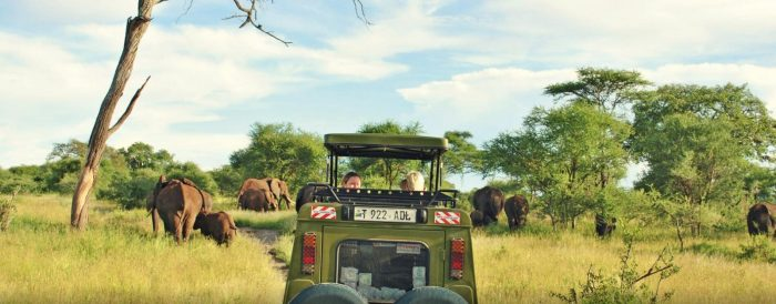 TENT SAFARI IN TANZANIA