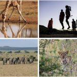 Classic Safari in Kenya