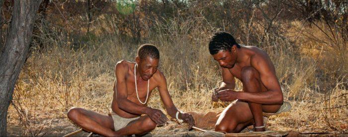 DISCOVER SAFARIS IN BOTSWANA