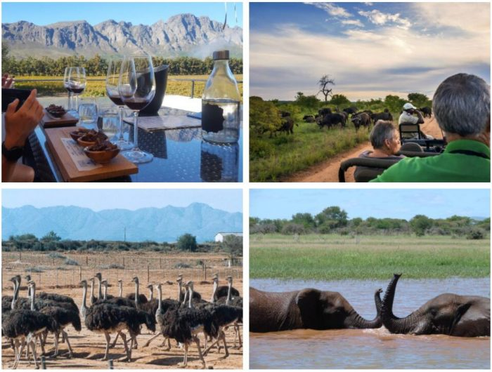 GREAT SOUTH AFRICAN TRIP 2
