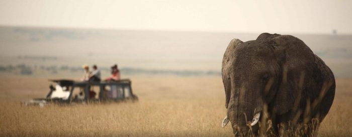 KENYA DELUXE FLIGHT SAFARI