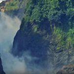Uganda Gorilla Trekking Express