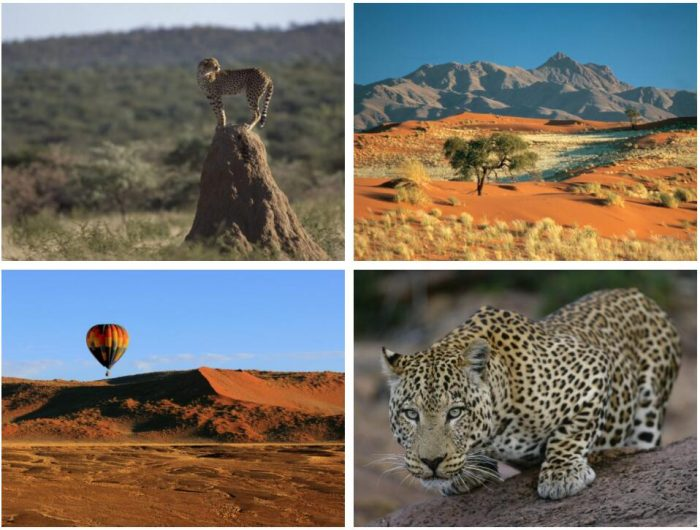 Namibia's Wildlife and Walking 2