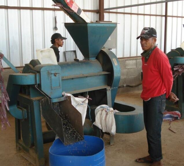 Timor-Leste Processing of the most important export good, coffee